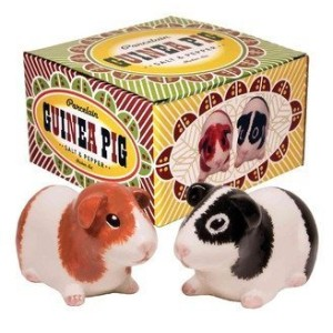 磁器Guinea Pig Salt And Pepper Shaker Set