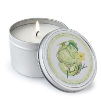 Crash Melon Soy Candle Tin by Susan MacConnell [並行輸入品]