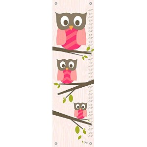 Oopsy Daisy Growth Charts Olivia The Owl by Stacy Amoo Mensah, 12 by 42-Inch by Oopsy Daisy