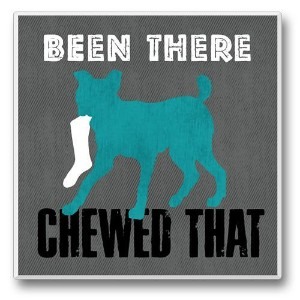 Spot On Singleコースター–Been There , Chewed That