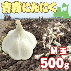 M玉 青森にんにく500g約9〜11玉(農家直送)(送料別)