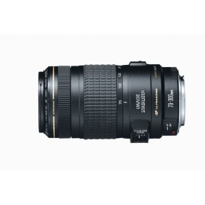 Canon キャノン レンズ EF 70-300mm f/4-5.6 IS USM Lens for Canon EOS SLR Cameras