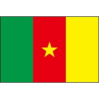 47cm 棒付き手旗・国旗 カメルーン共和国(Republic of Cameroon 夏麦論)・National flag【応援グッズ】