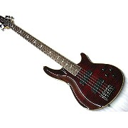 Schecter AD-OM5-EXT/BCH シェクター 5弦ベース【限定モデル】