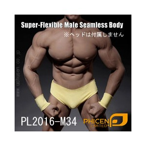 【Phicen】PL2016-M34 male super flexible seamless body with metal skeleton ファイセン 1/6スケール シームレス男性ボディ...
