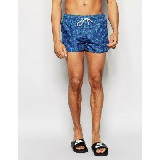 Oiler & Boiler Tuckernuck Swim Shorts ショーツ with Anchor Print