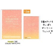 COLLECTION FLUFFY / B5 クラフト英習帳 13段 71197