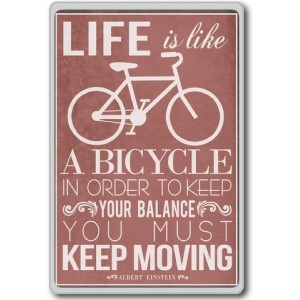 Albert Einstein, Life Is Like A Bicycle In Order To Keep... - Motivational Quotes Fridge Magnet - ?...