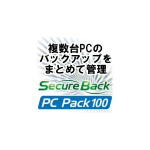 Secure Back 4 PC Pack 100