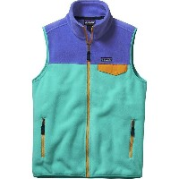パタゴニア Patagonia メンズ アウター ベスト【Lightweight Synchilla Snap-T Fleece Vest】Howling Turquoise