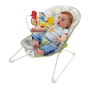 Fisher-Price Baby's Bouncer, Geo Meadow by Fisher-Price [並行輸入品]