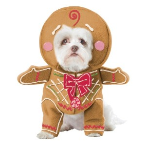 California Costume Collections Gingerbread Pup Dog Costume, Medium by California Costumes