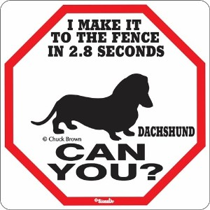 I MAKE IT TO THE FENCE IN 2.8 SECONDS DACHSHUND CAN YOU?サインボード:ダックスフンド [並行輸入品]