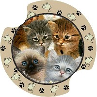 Thirstystone Kittens Car Cup Holder Coaster, by Thirstystone