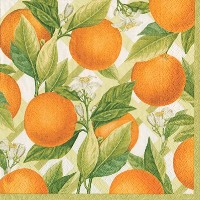 Entertaining with Caspari Luncheon Napkin Dinner Napkins オレンジ 12370D