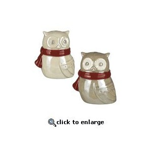 Grasslands Road Northern Lights Owl Salt & Pepper Shaker Set