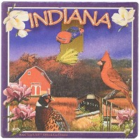 "CoasterStone SQ029 Absorbent Coasters, 4-1/4-Inch, ""Indiana"", Set of 4 by CoasterStone [並行輸入品]"
