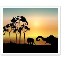 JP London Peel and Stick Removable Wall Decal Sticker Mural, African Animal Safari Night, 24 by 19...