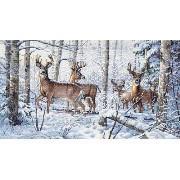 """Gold Collection Woodland Winter Counted Cross Stitch Kit-18""""X10"""" 18 Count (並行輸入品)"""