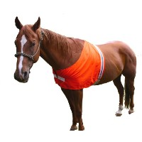 Dog Not Gone Visibility Products Safety Horse Vest, Small/Medium by Dog Not Gone