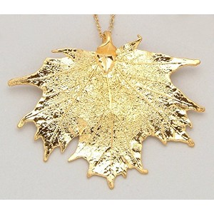 24 K Gold Dipped Sugar Maple Leaf with金メッキチェーン