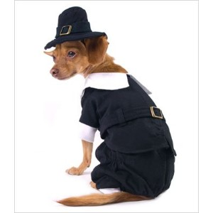 Pilgrim Boy Costume for Dogs - Size 4 (12.5 l x 16 - 18.5 g) by Puppe Love