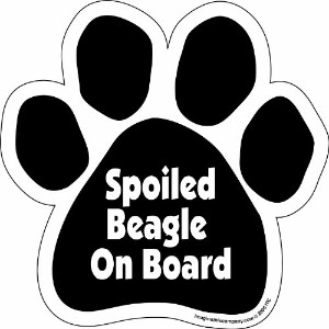 Imagine This Paw Car Magnet, Spoiled Beagle on Board, 5-1/2-Inch by 5-1/2-Inch by Imagine This