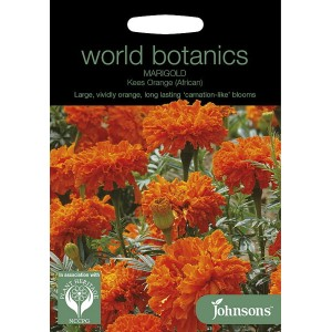 【輸入種子】Johnsons SeedsWorld Botanics CollectionMarigold (African) Kees Orangeマリーゴールド(アフリカン)・キーズ...