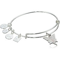 Alex and Ani Charity by Design Fairyバングルブレスレット Expandable