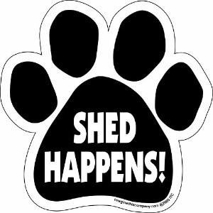 Car Magnet- Paw-Shed Happens-5.5 x 5.5 by Imagine This