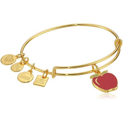 Alex and Ani Charity by Design、Apple EWB、バングルブレスレット Expandable