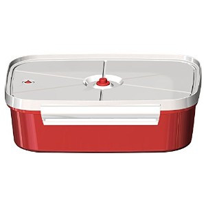 Jaccard Speedy Plus Instant Marinater, 6 x 9, Red/White by Jaccard