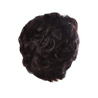 Zhhlinyuan 良質 Fashion Party Synthetic Wigs Elegant Women's Short Curly Wigs RM3523