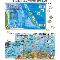 Franko Maps Isla Mujeres Reef Creatures Guide for Scuba Divers and Snorkelers by Franko Maps