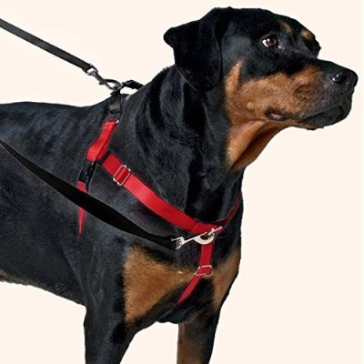Freedom No-Pull Dog Harness Training Package - 5/8 XSmall Black by Wiggles Wags Whiskers