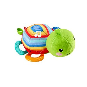 Fisher-Price Musical Teething Toy, Turtle by Fisher-Price