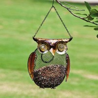 Owl, Metal and Glass Bird Feeder