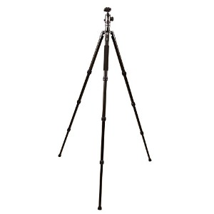 【送料無料】【TP250 TRAVEL TRIPOD HEAD】 b01dfdvv7o