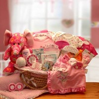 Sweet Baby Girl Gift Basket in Moses Carrier -Pink Deluxe XL by Organic Stores