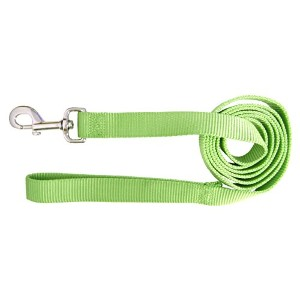 Hamilton Pet Company - Single Thick Nylon Lead- Lime 1 X 6 - SLO 6LI