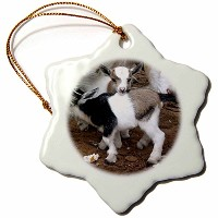 3droseファーム動物–Pygmy Goat Family–Ornaments 3 inch Snowflake Porcelain Ornament orn_1285_1