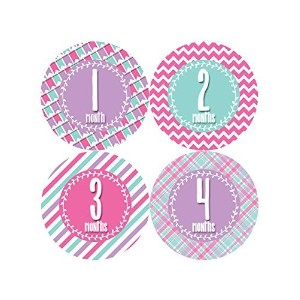 Months in Motion 395 Monthly Baby Stickers Baby Girl Months 1-12 Milestone by Months In Motion
