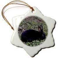 3drose Whiteoak写真動物Prints – Black Bunny Eatingクローバー – Ornaments 3 inch Snowflake Porcelain Ornament...