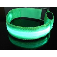 DDQ LED Light Armband Safely Walking and Running Flashing Wristband -Green by DDQ