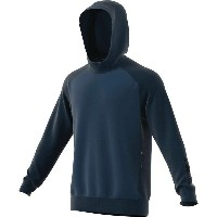 アディダス メンズ トップス パーカー【Adidas Terrex Climb The City Wool Hoodie】Blue Night