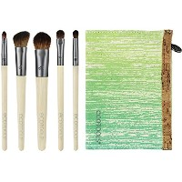 Ecotools Make-Up 6-Piece Eye Brush Set With Case (並行輸入品)