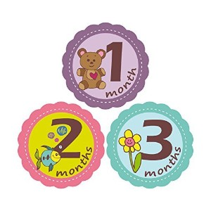 'MuchMore' Baby Monthly Stickers for Girl, Bodysuit Stickers ,Onesie Stickers Great Shower Gift...