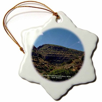 3dローズSandy Mertens New Mexico – Carlsbad Cavern国立公園 – Ornaments 3 inch Snowflake Porcelain Ornament...