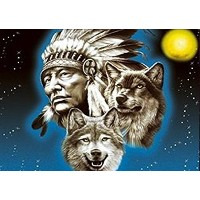 (Indians, Wolves and Eagles) - NATIVE PRIDE UNFRAMED Holographic Wall Art-POSTERS That FLIP and...