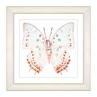 Studio Worksモダン'ホワイトbutterfly-red ' Framed Fineアートプリント 12-Inch x 12-Inch Fd1004-1353A-12x12W